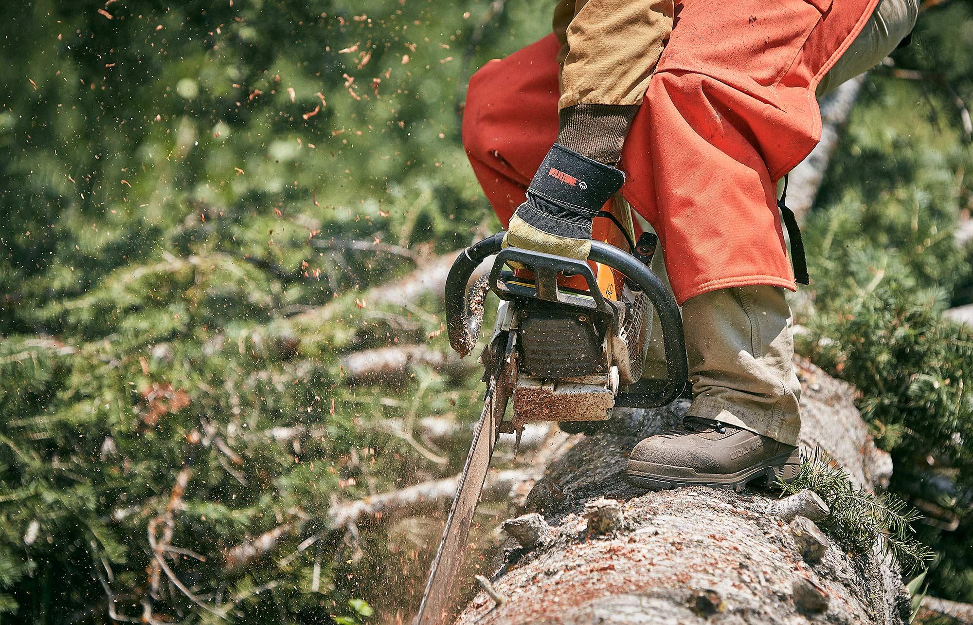 wolverine-Utah-Forestry-chain-saw-jeremy-frechette_HP.jpg