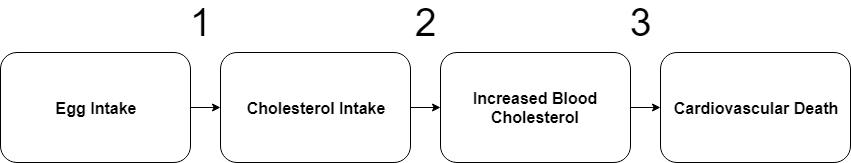 conceptual model 1.png