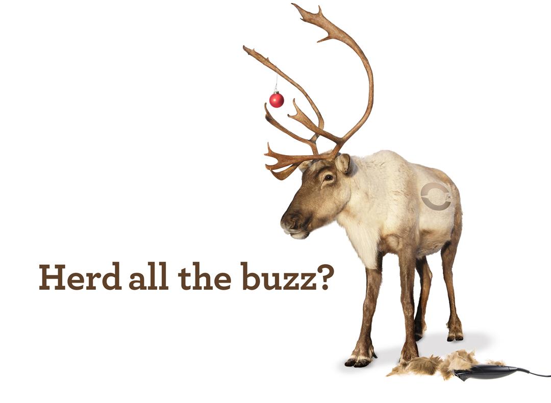 Reindeer_horiz.jpg