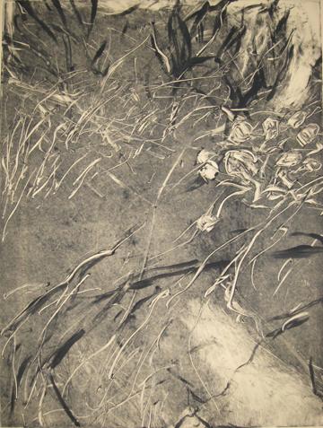 Dunes, Grand Saline,  St. Barts: Part III of a Triptych