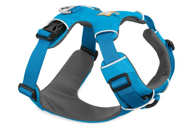 - This is the harness that Elsa wears. Click here to purchase.