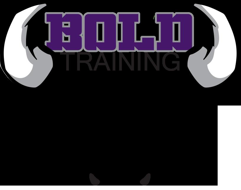 Bold Training logo - New.png