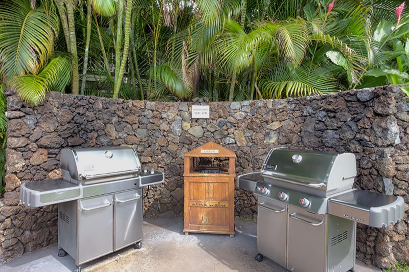 Aina-Nalu-Lahaina-Maui-Condos-P11.jpg