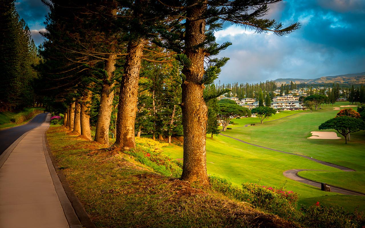 Kapalua-Villas-Maui-Golf-Rentals-P4-Golf-Course.jpg