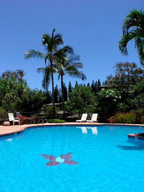 Kapalua-Villas-Maui-Golf-Rentals-P19-Pool.jpg