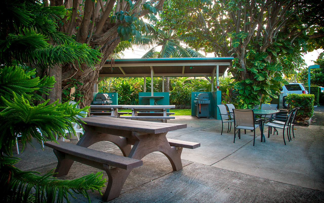 Napili-Bay-Resort-Condos-Maui-P4-Grounds.jpg