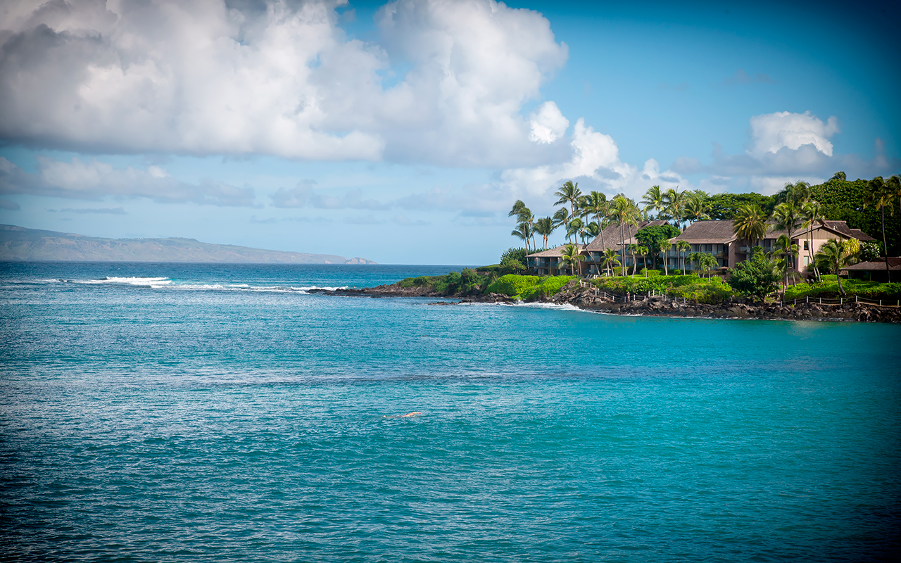 Napili-Gardens-Maui-Condo-Rentals-P3_Ocean-View.jpg