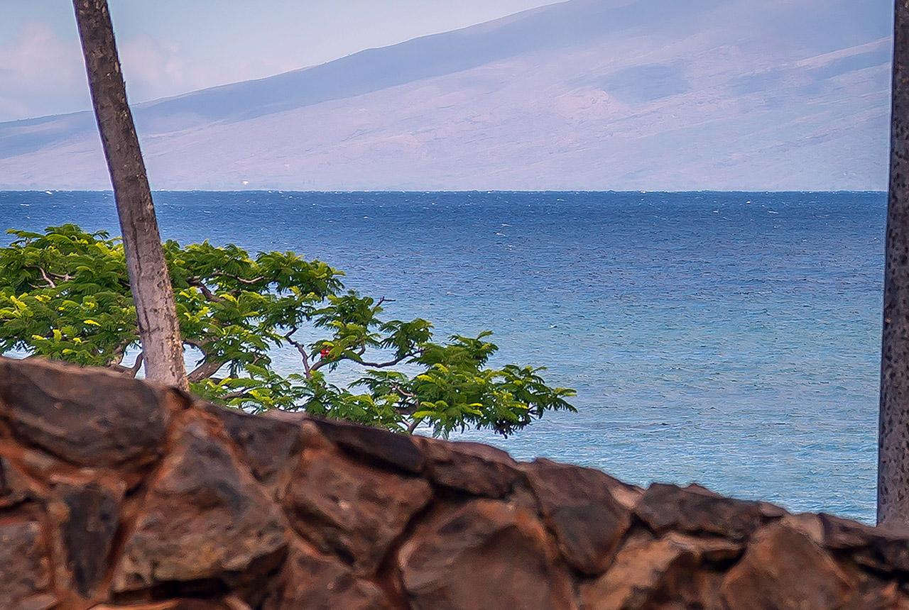 kahana-villas-vacation-club-resort-maui-ve108-grounds-a.jpg