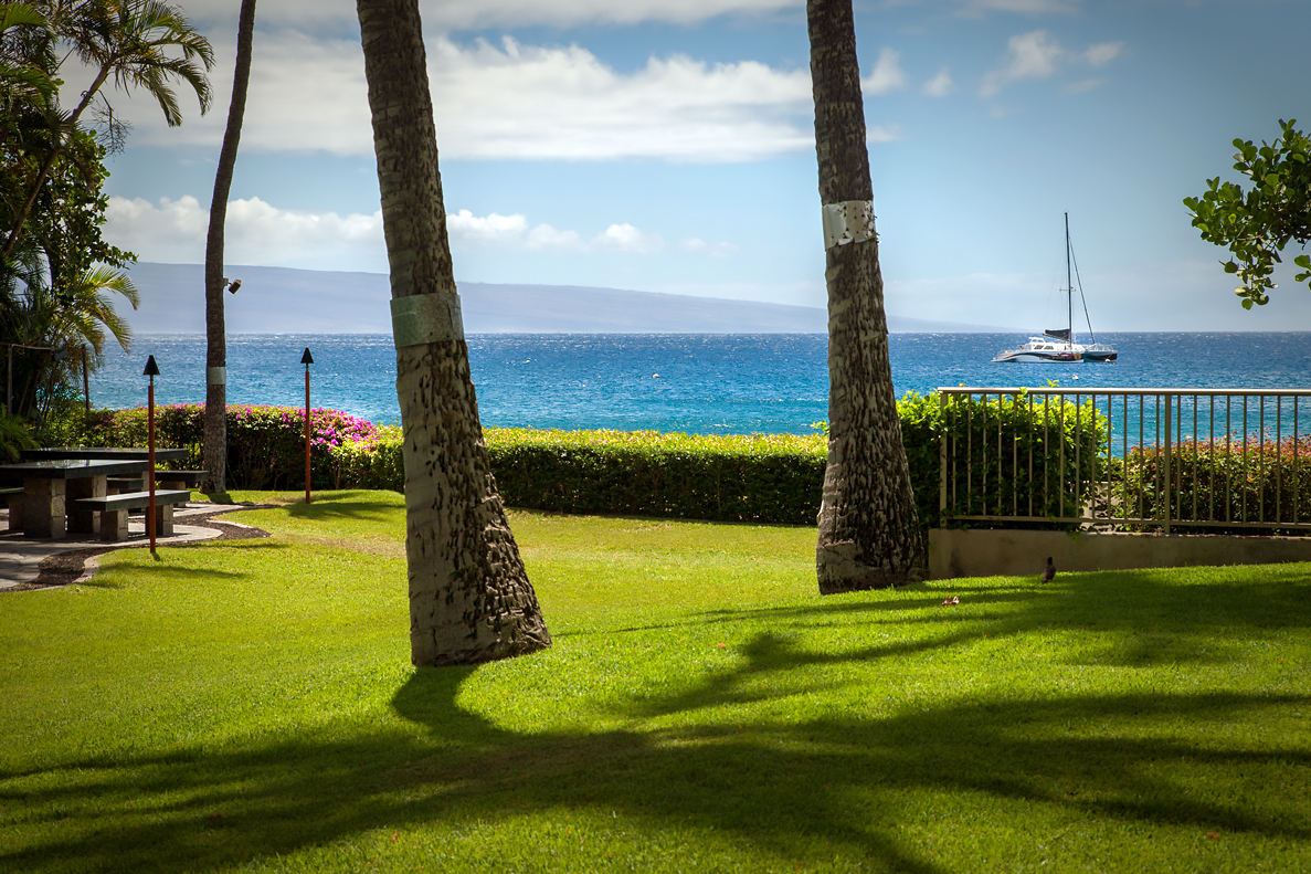 The-Whalers-Maui-Condos-Kaanapali-WH159-MB-grounds-2.jpg
