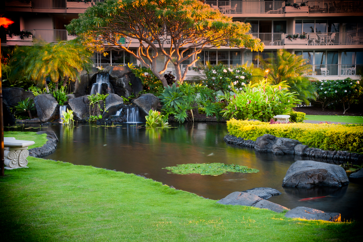 The-Whaler-on-Kaanapali-Beach-Rentals-Maui-WH1007-koi-pond.jpg