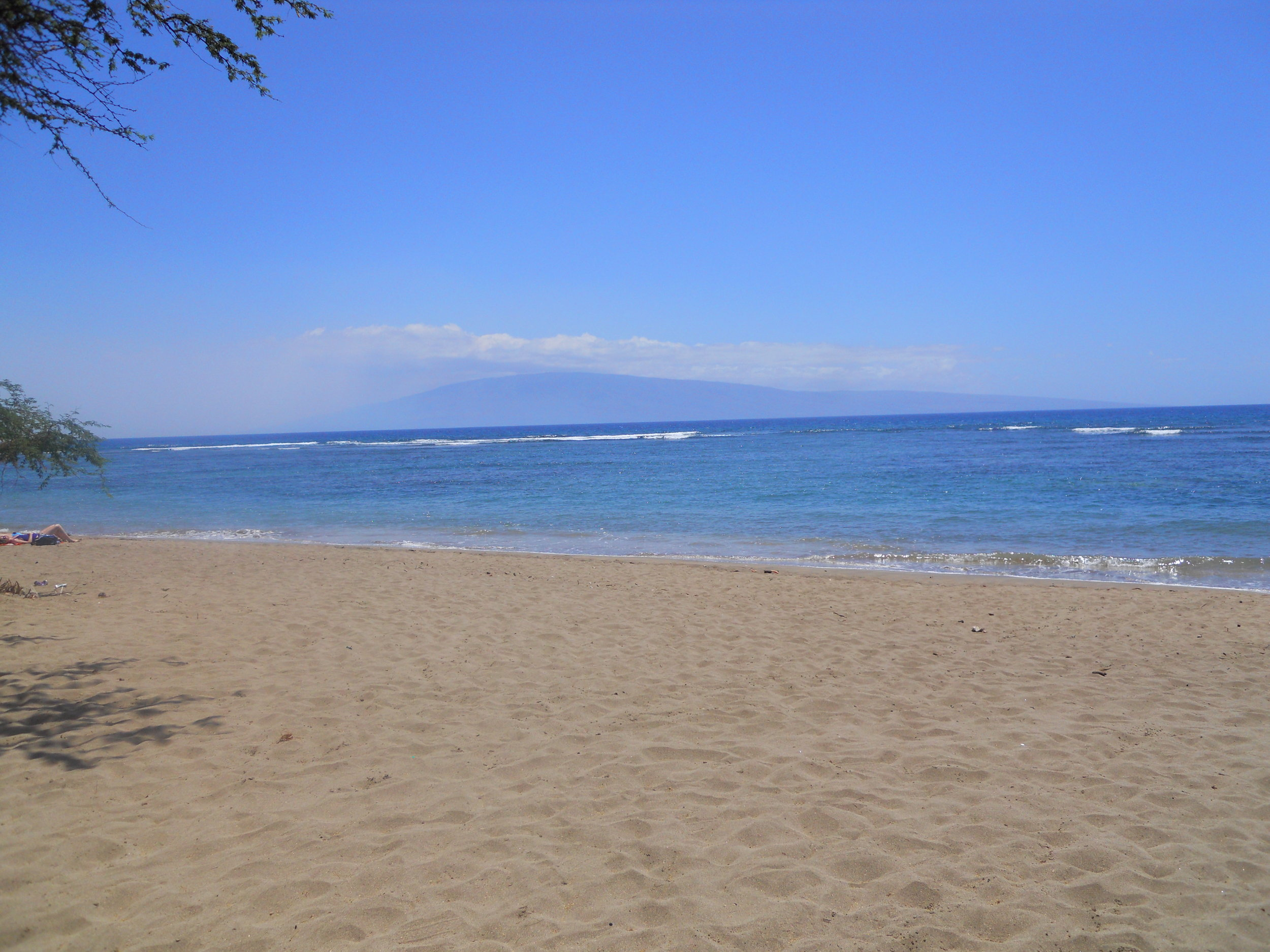 Beach Site 7.jpg