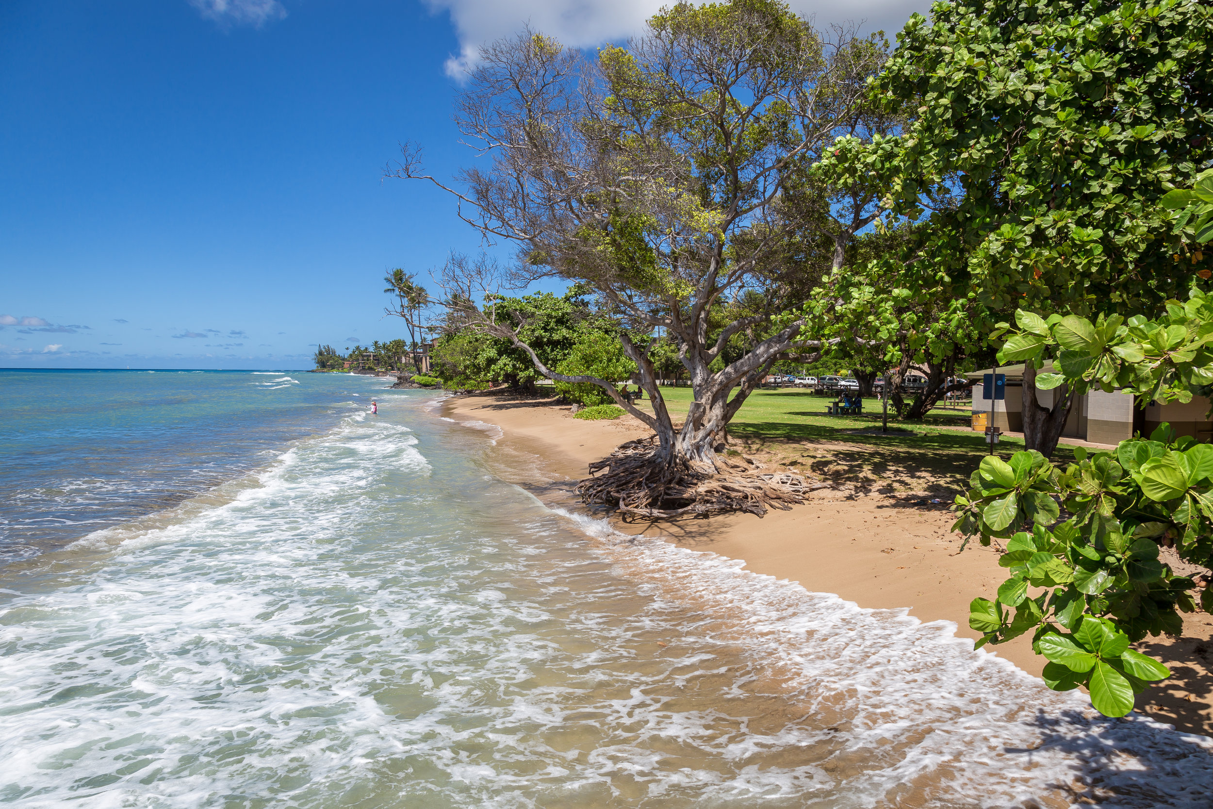 A little over a mile away, Honokawaii Beach Park offers gentle surf and large field for children to play.