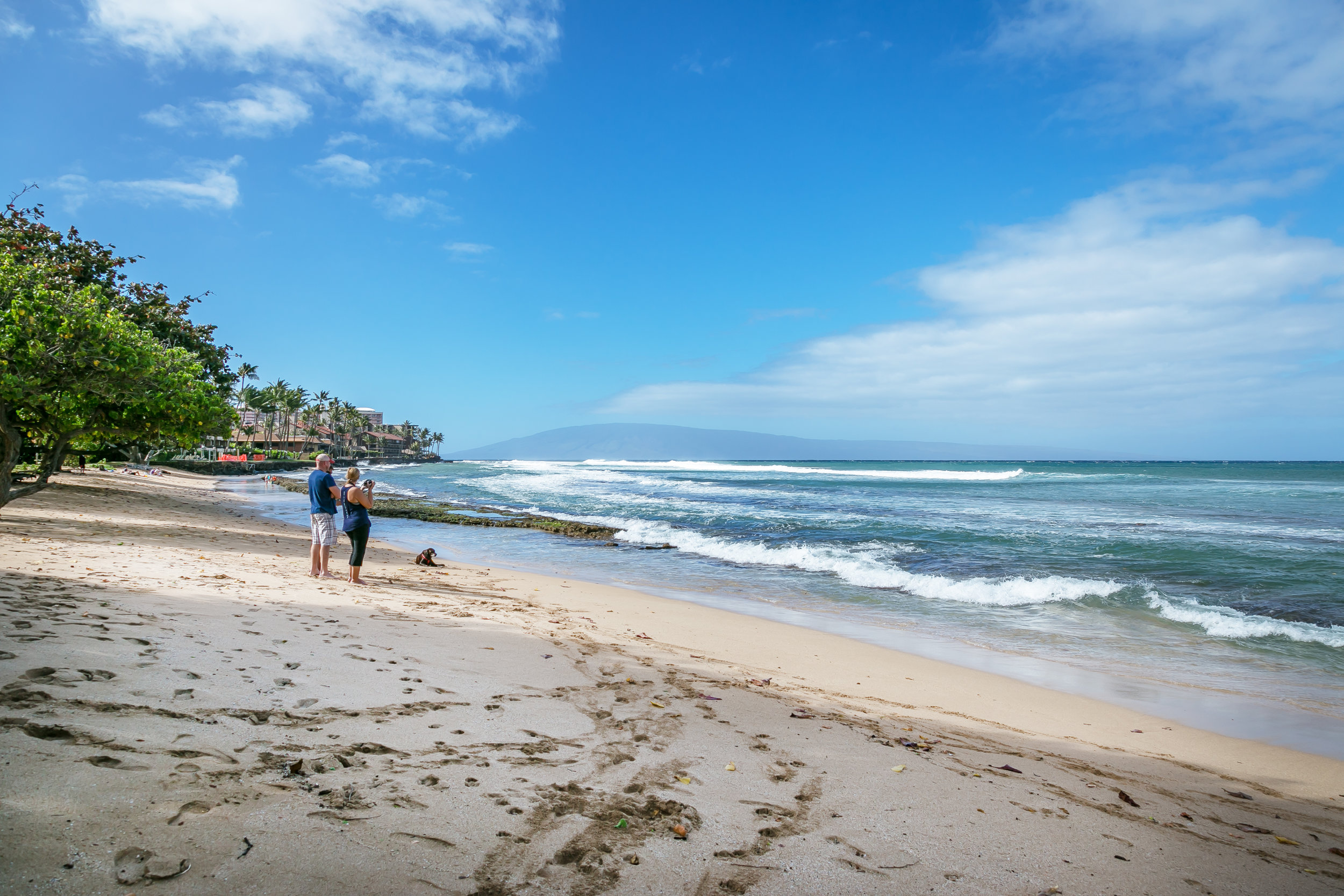 .3 Miles away, Honokawaii Beach Park offers a great beach and gentle surf!