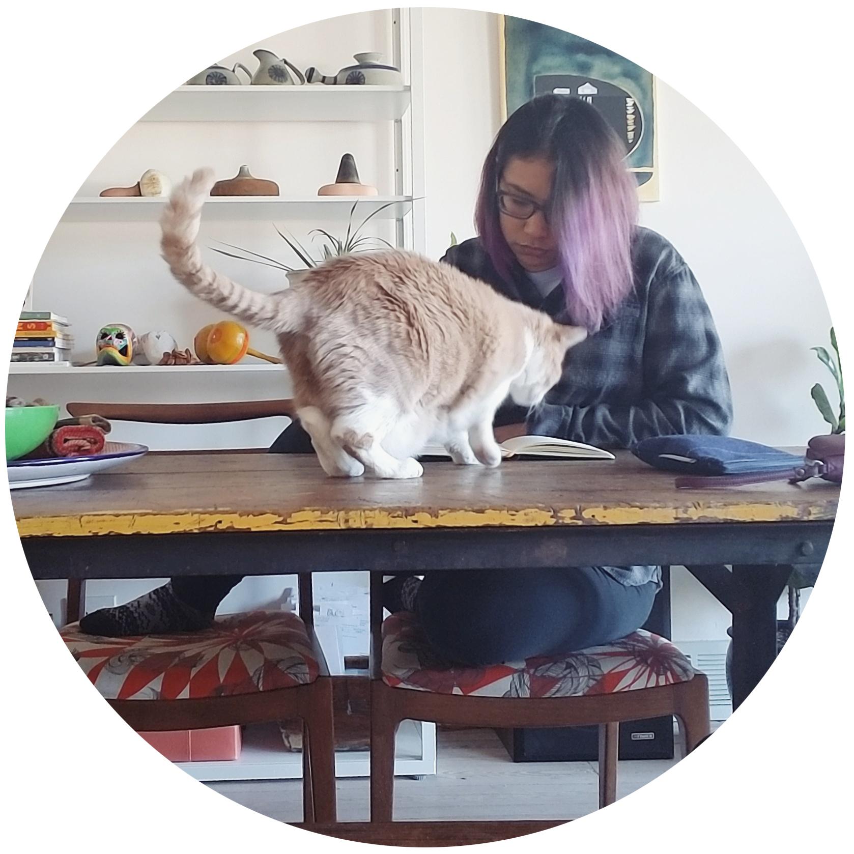 ME.Cat.jpg