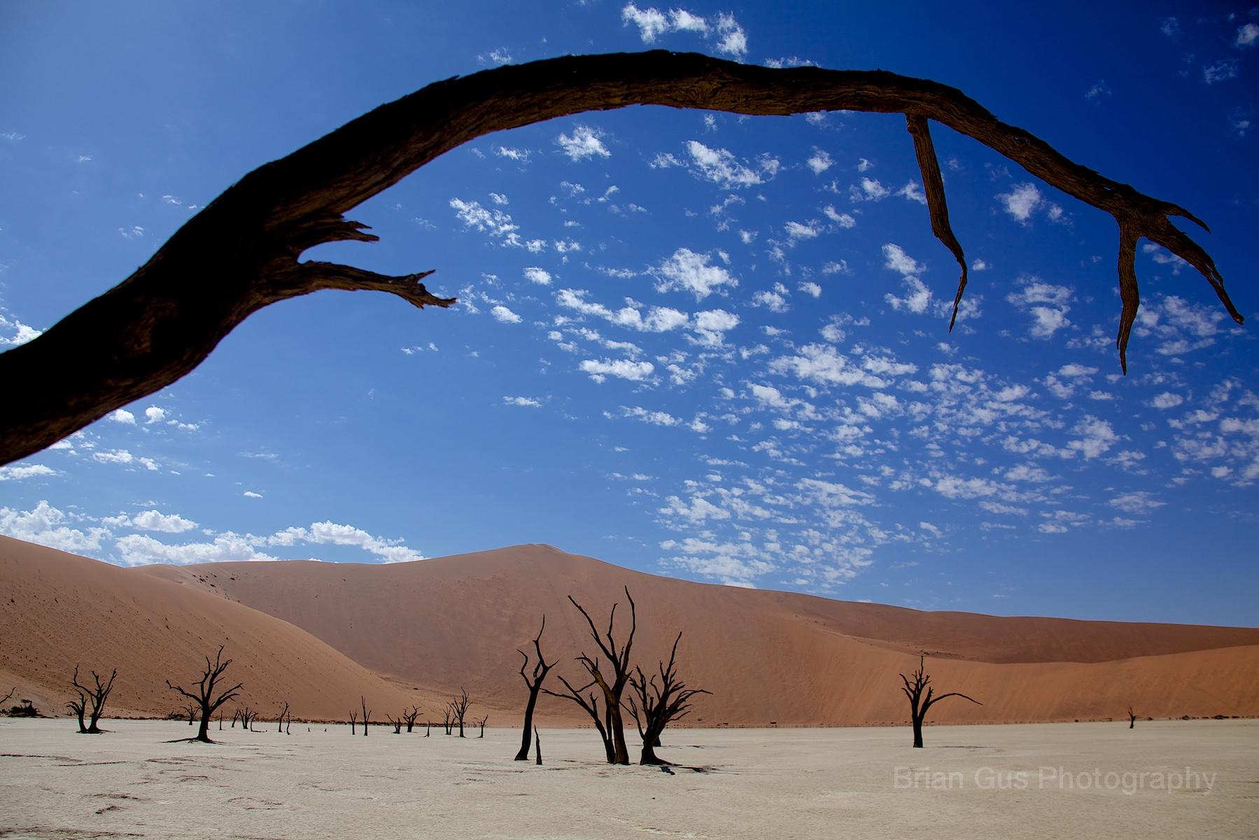 DesertV.jpg