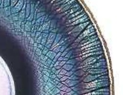 """Detail of stretch glass plate showing """"onion skin"""" effect."""