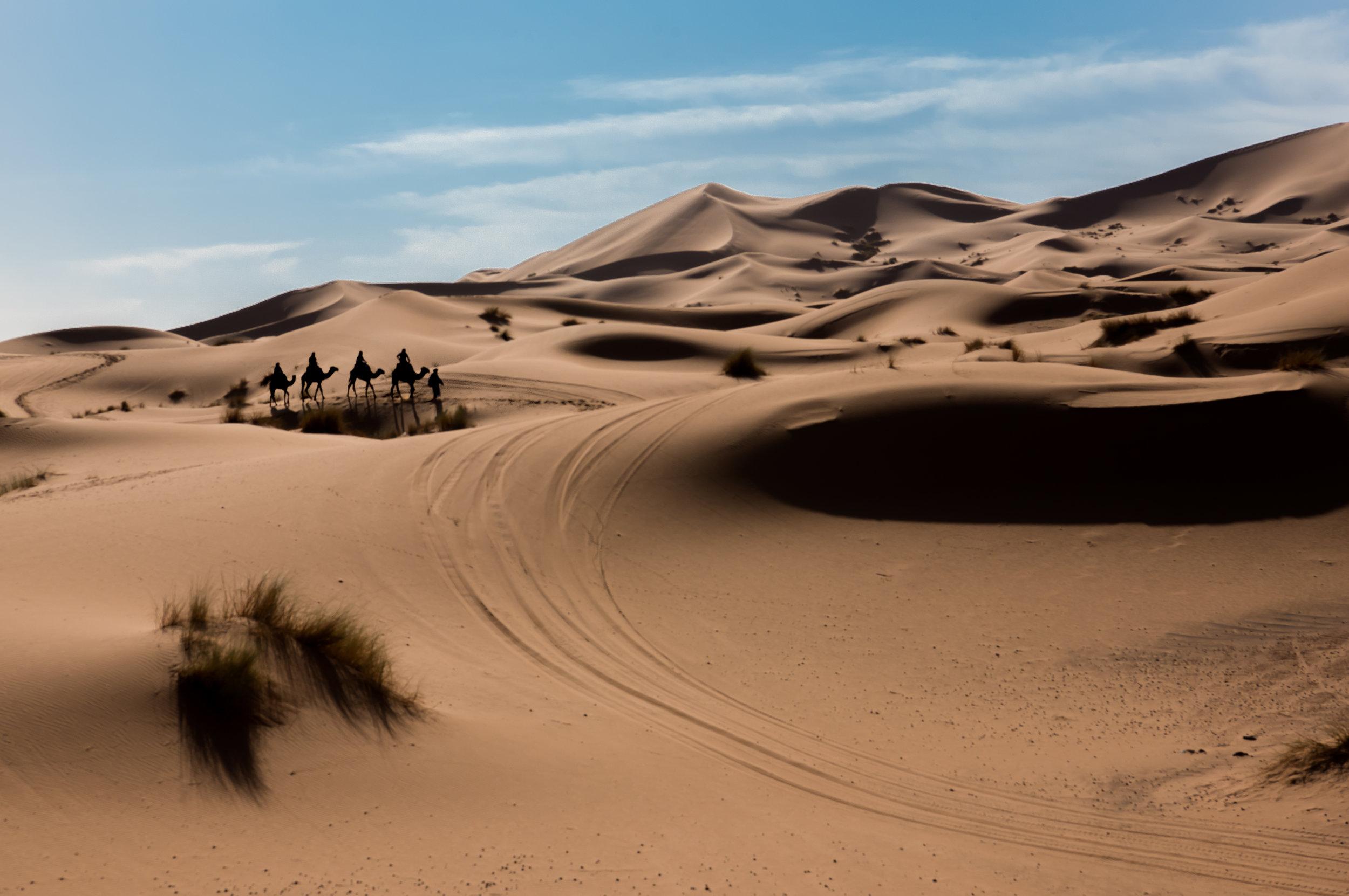 Desert Dunes - Erg Chebbi (Morocco)