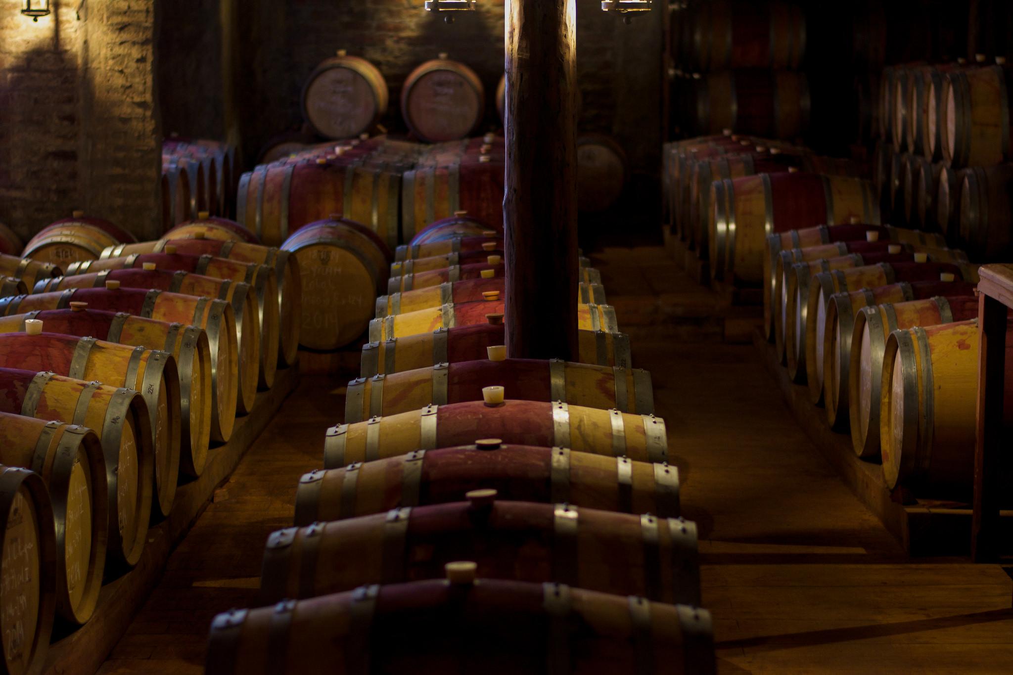 Wine Cellar - Casa de Silva