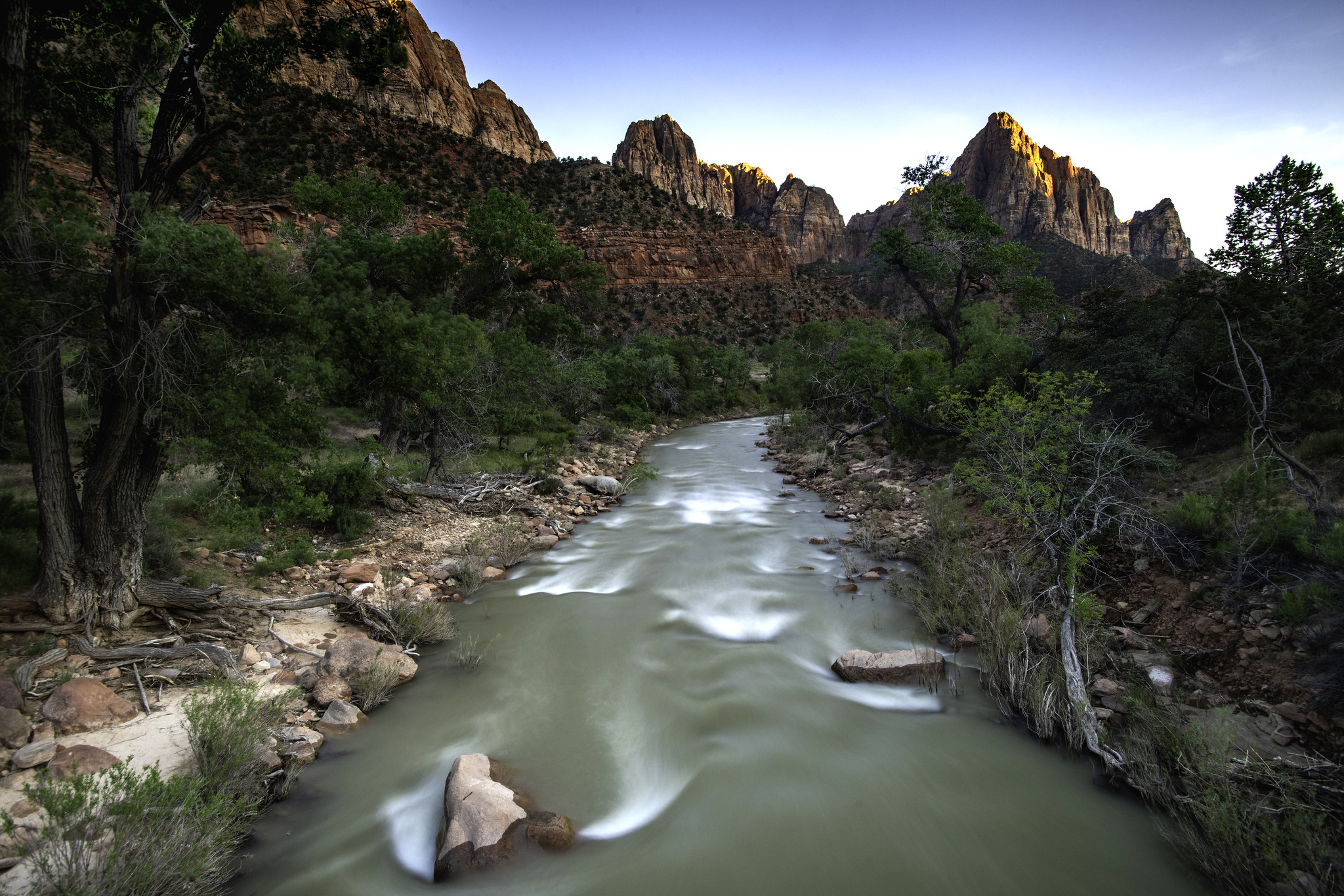 Zion Zenith - The Watchman  (Zion Park, Utah)