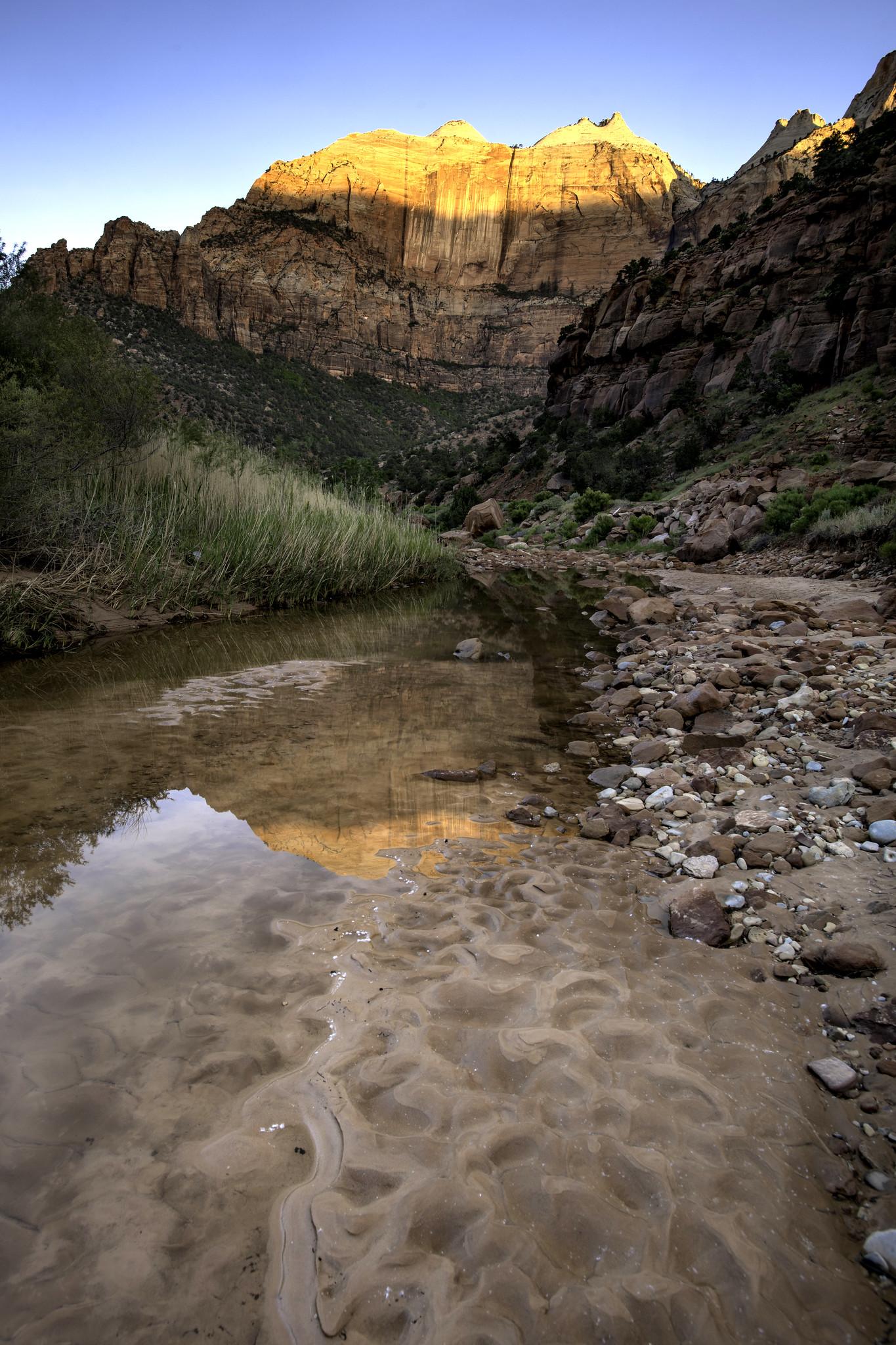 Zion Reflections (Zion Park, Utah)