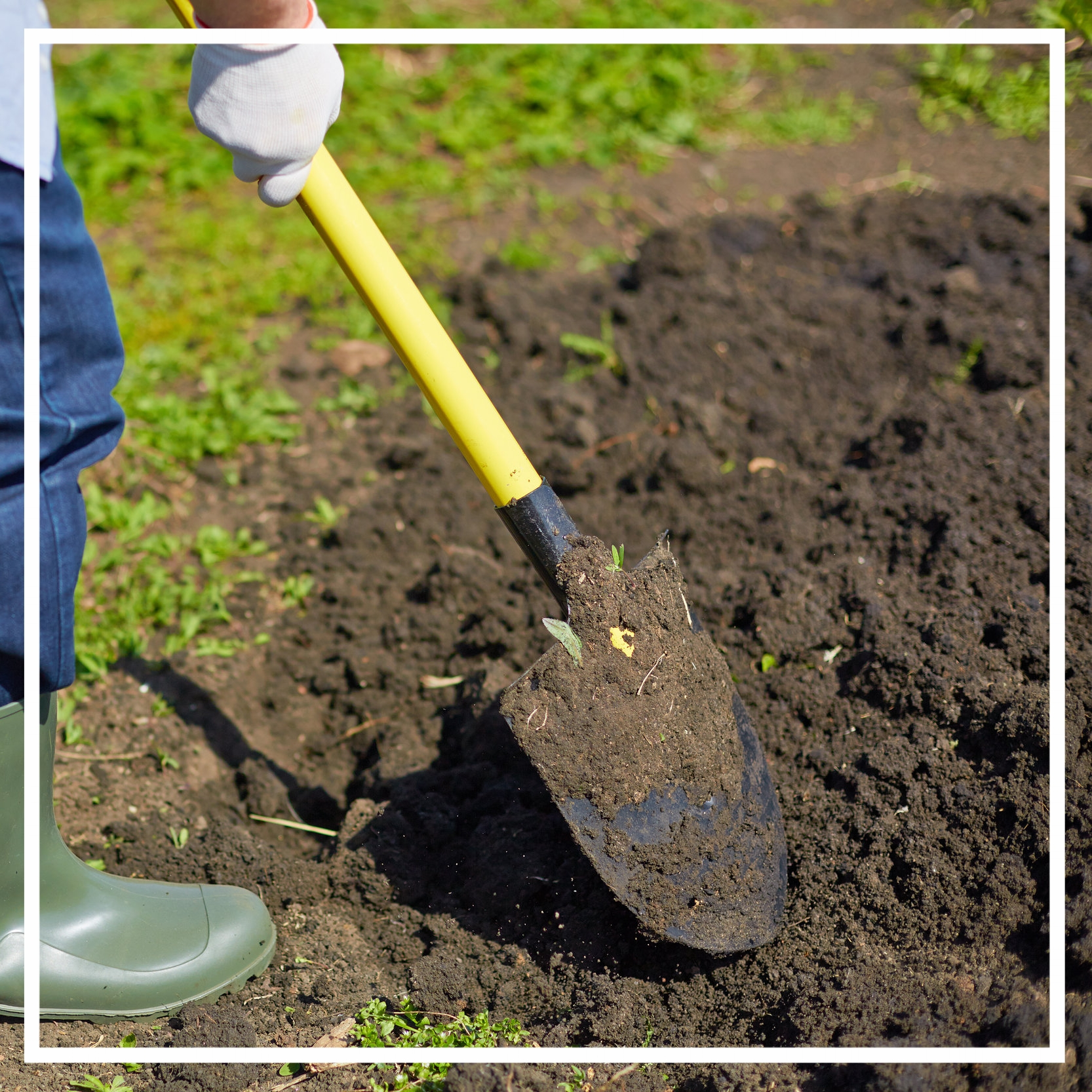 Residential landscape maintenance in Indianapolis, Carmel, Fishers, Westfield and Zionsville.