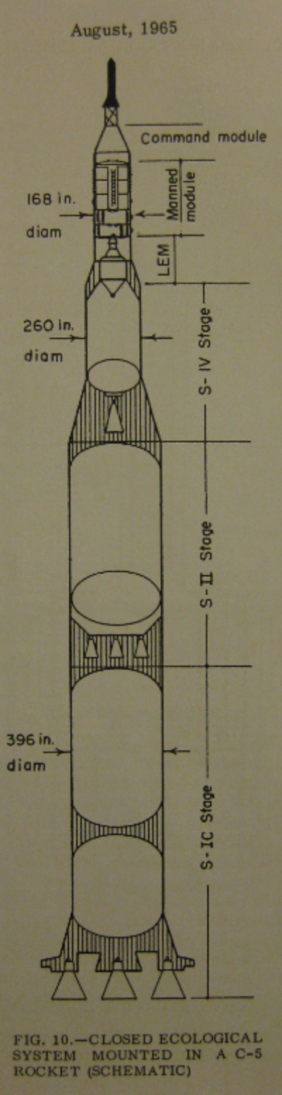 PROPOSAL TO PLACE THE ALGATRON IN A ROCKET