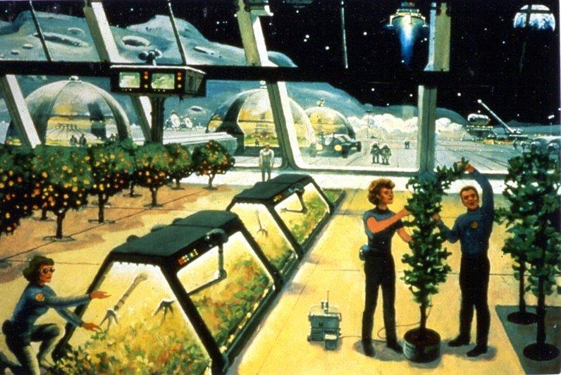 Imagining a Lunar Farm
