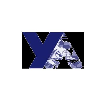 youngarts2.jpg