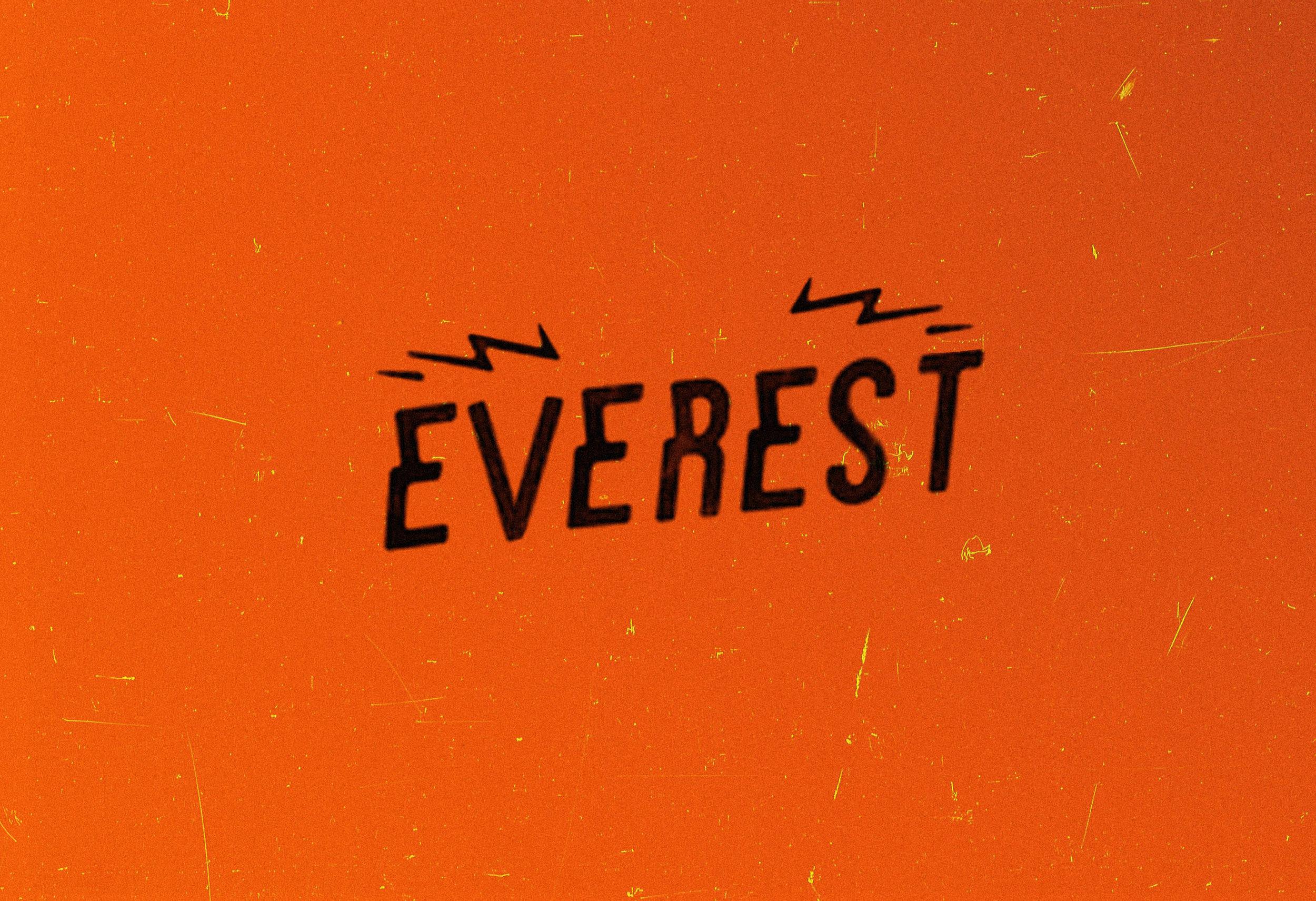 everest_2013logo_OR.jpg