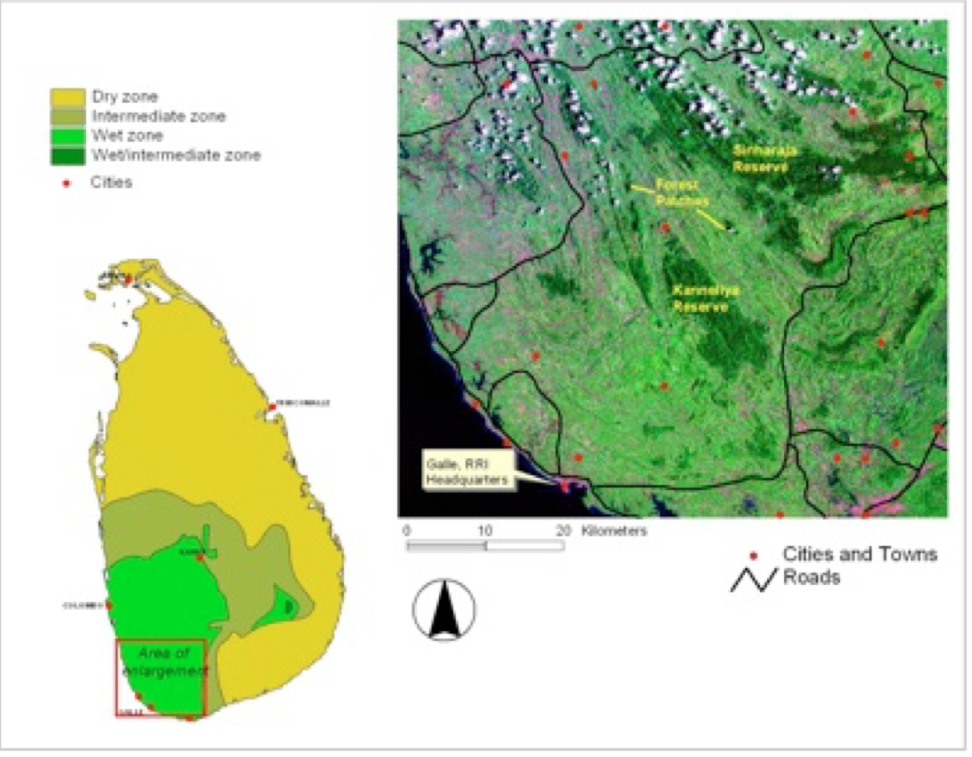 The fragmented rainforests of southern Sri Lanka- Only 5% of this ecosystems is left for Leopards, Elephants and other critically endangered species.