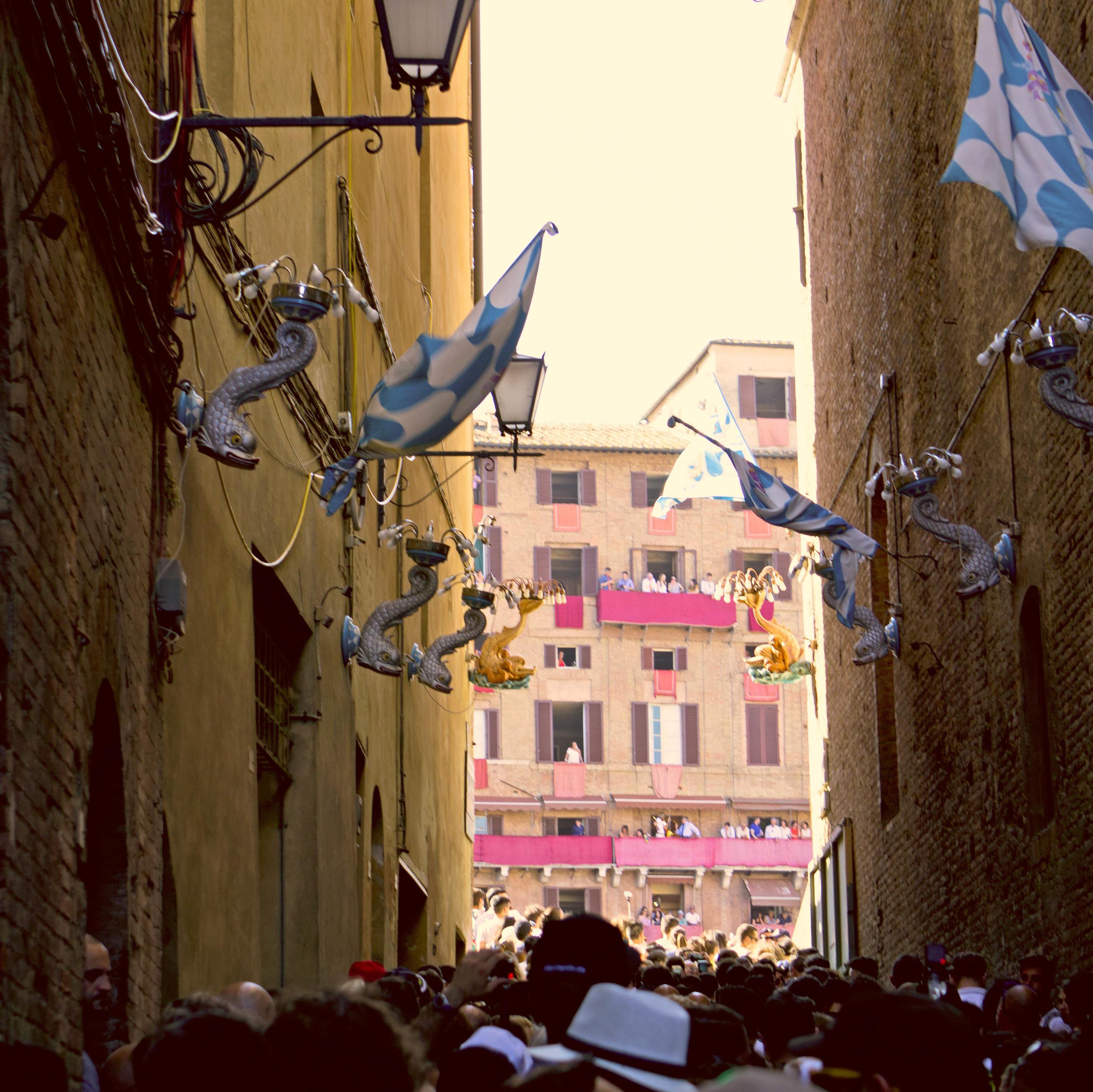 Entering the Piazza del Campo