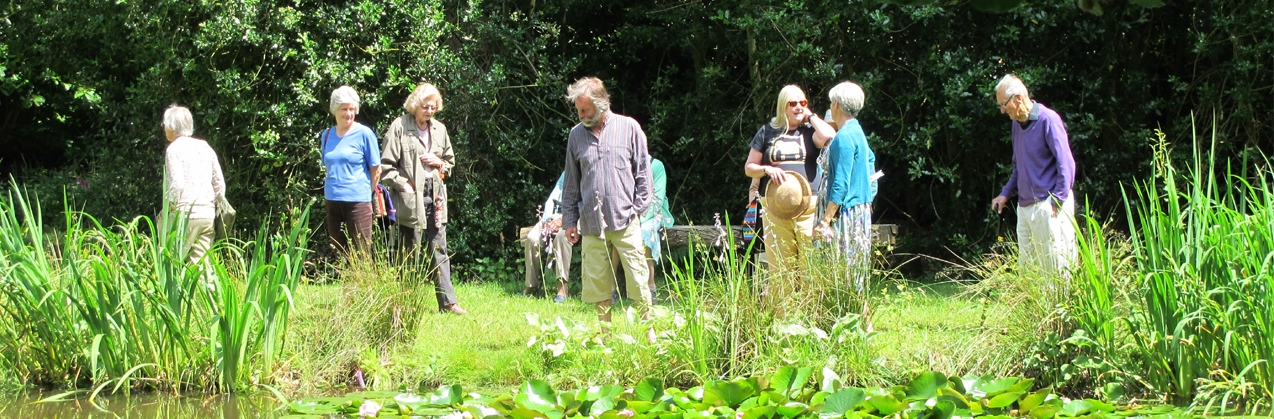 Visiting Norney Wood, Shackleford