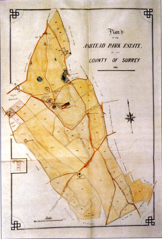 Plan of Ashtead Park Estate in 1880