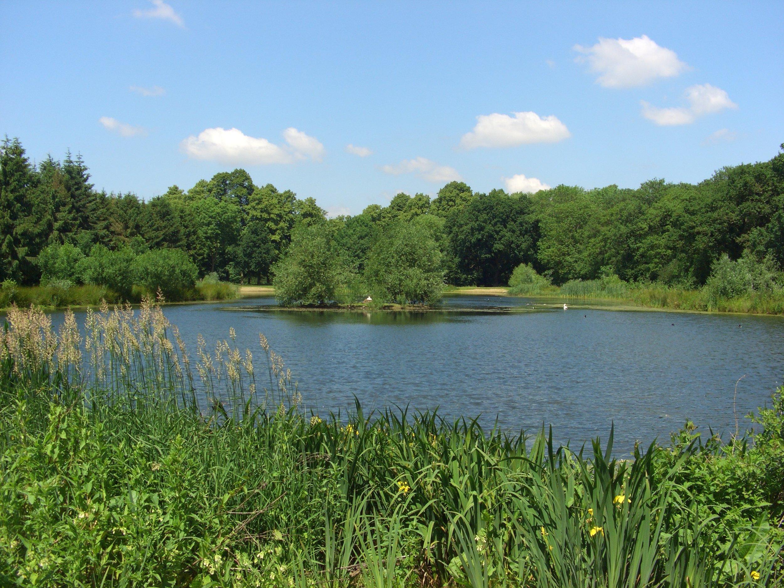 Lake 2005