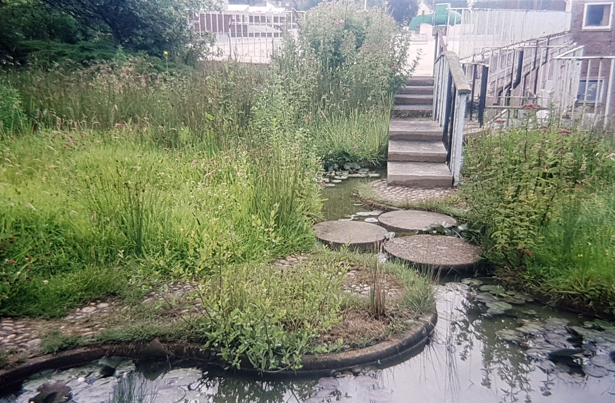 In 1997 before restoration showing some of the overgrown and neglected planting