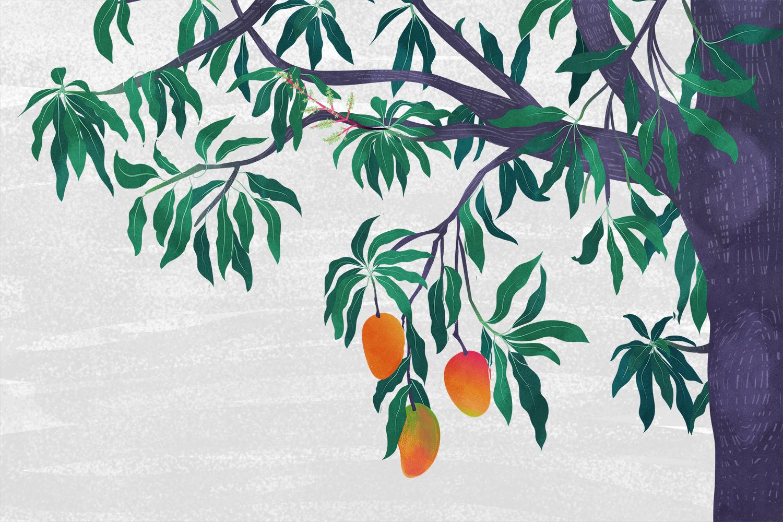 Food writing on the mango