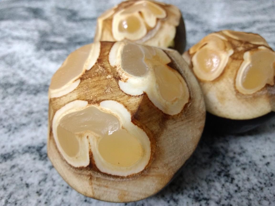 Targola: Native Indian fruits by Simrit Malhi