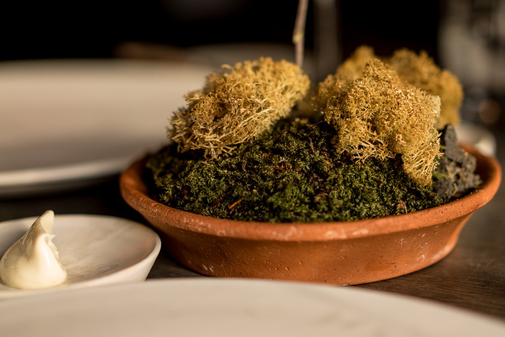 Dried reindeer moss dusted with cep mushrooms, Noma.