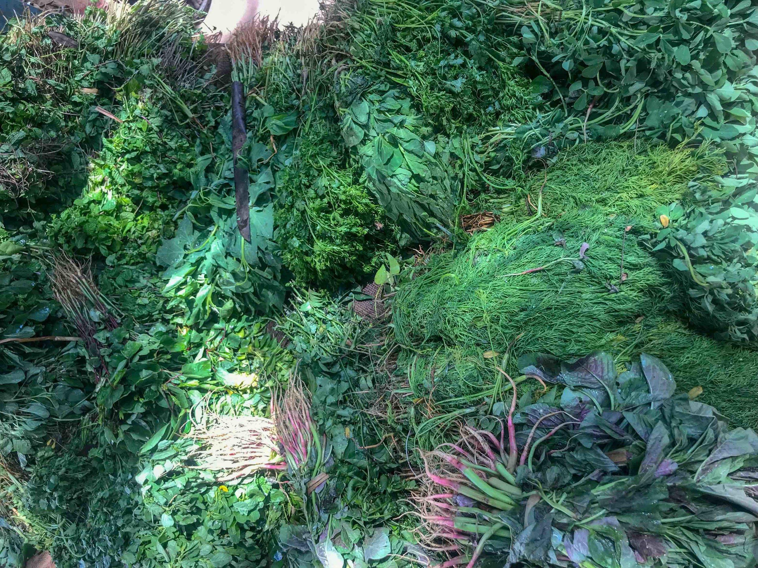 Winter greens at the local market  Image credit: Monika Manchanda