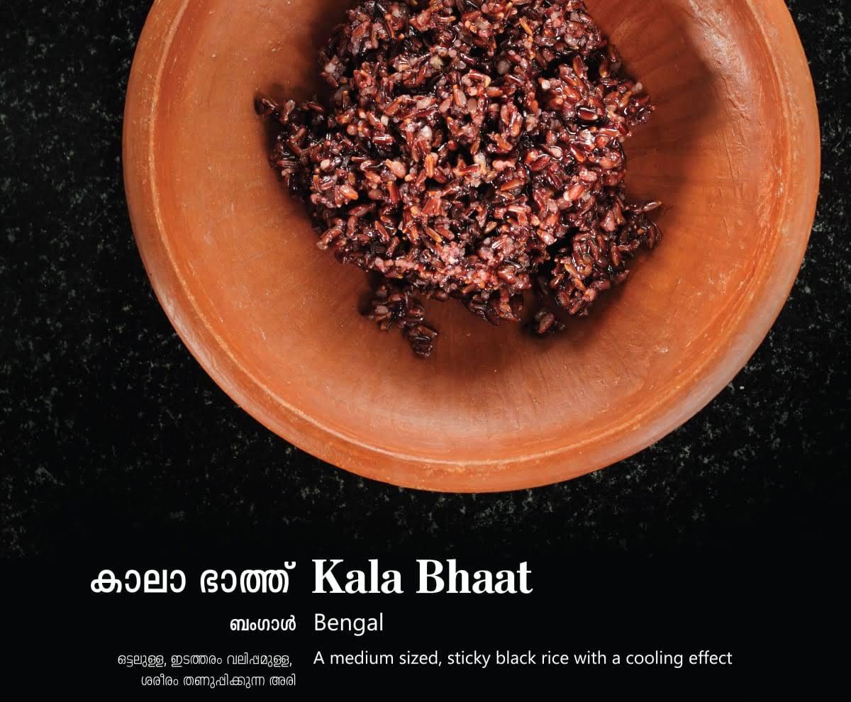 Edible Archives at the Kochi-Muziris Biennale