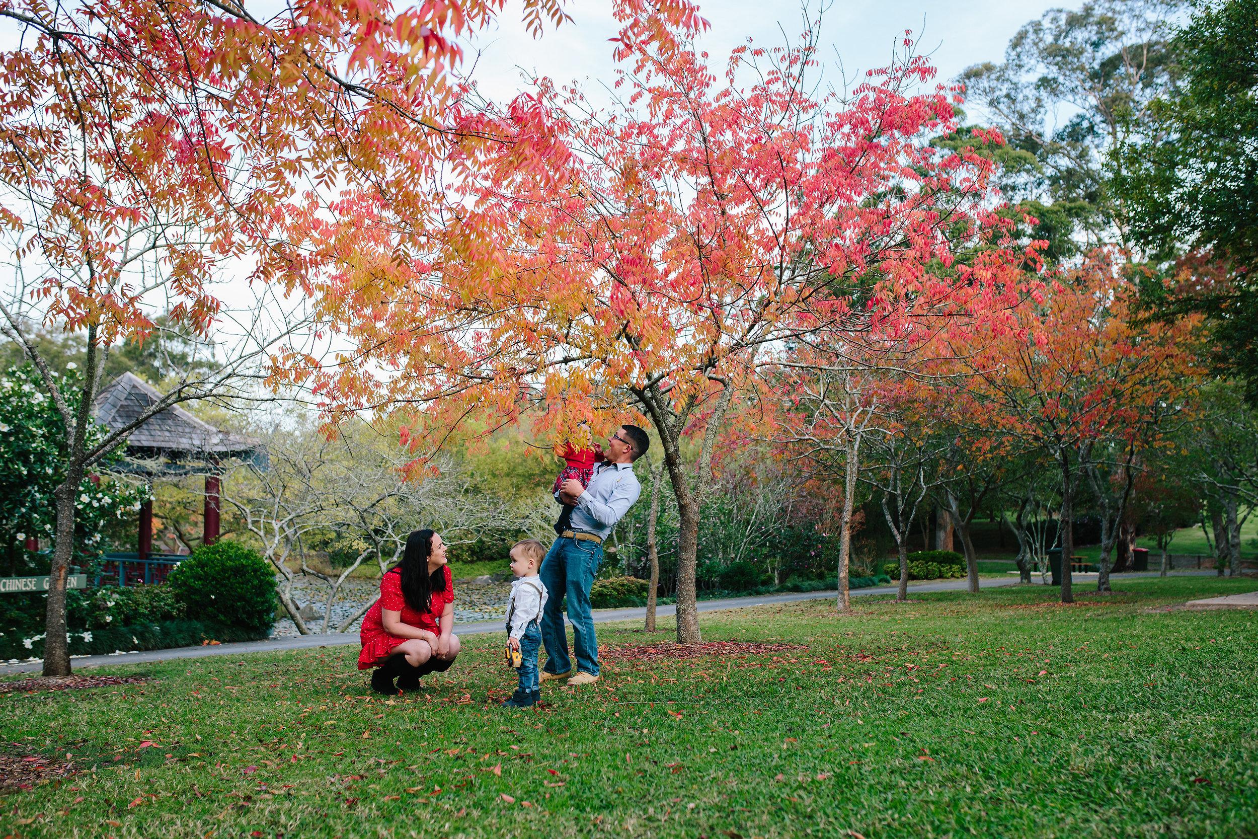 Autumn | Hills District, Sydney