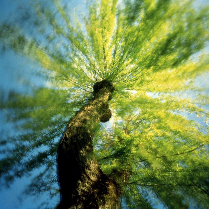 arboretum-005.jpg