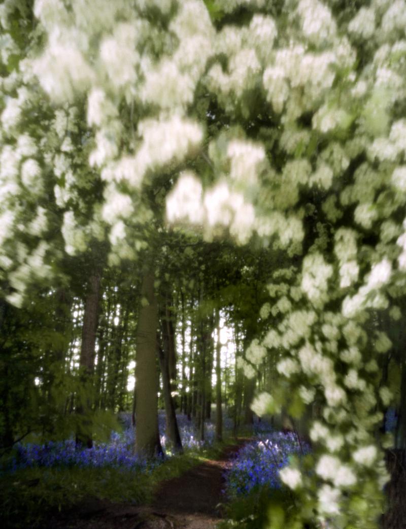arboretum-006.jpg