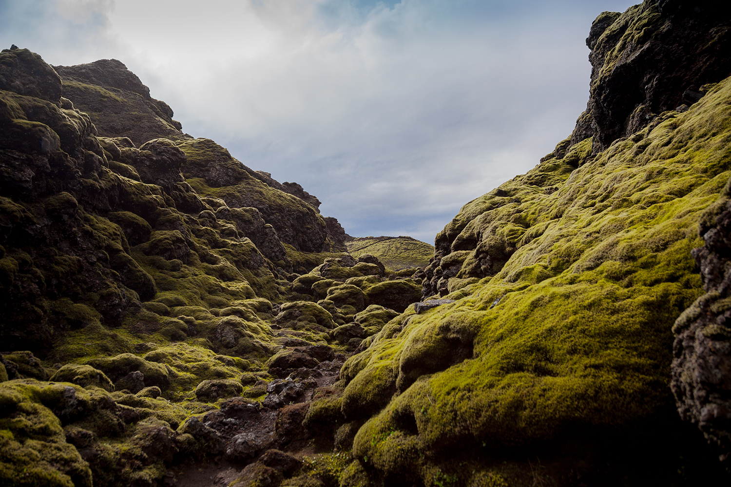 Craters of Laki, Iceland, 2011