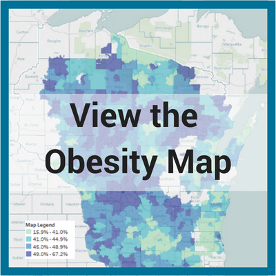 View the Obesity Map