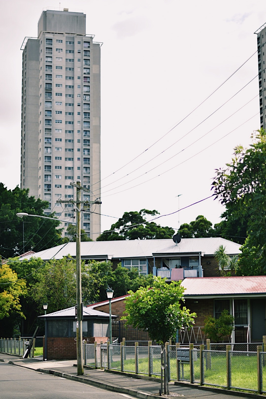 The surrounding neighbourhood of Waterloo is one of Sydney's most demographically diverse.