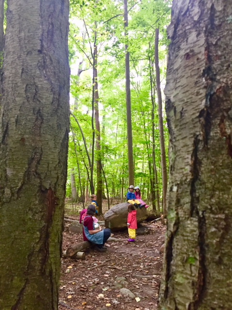 Our Forest Preschool allows children to benefit from the unique learning experiences that come with time spent almost exclusively outdoors.