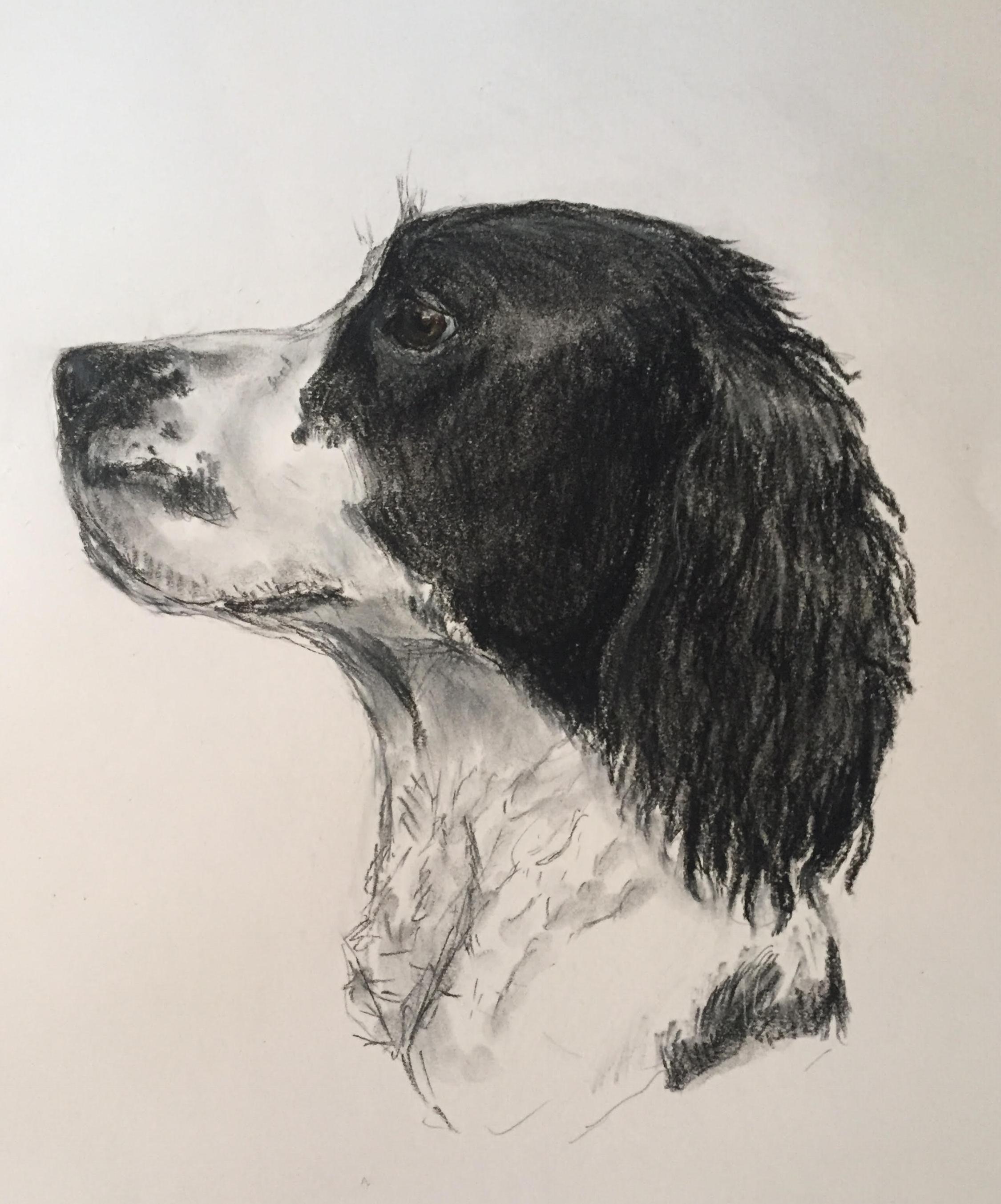 'Layla' Pastel on paper
