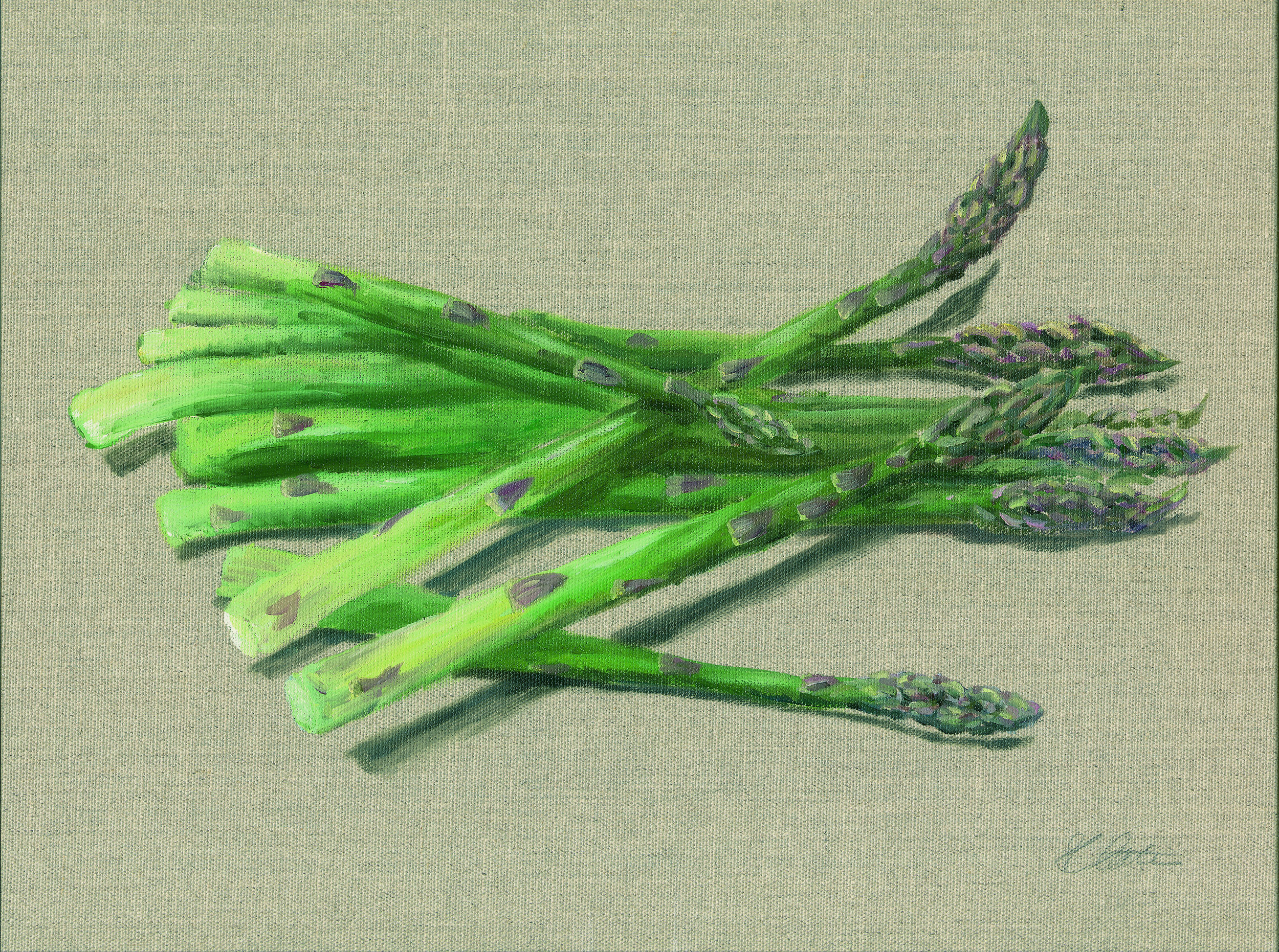 Asparagus. Oil on hessian canvas. Original Sold Prints available