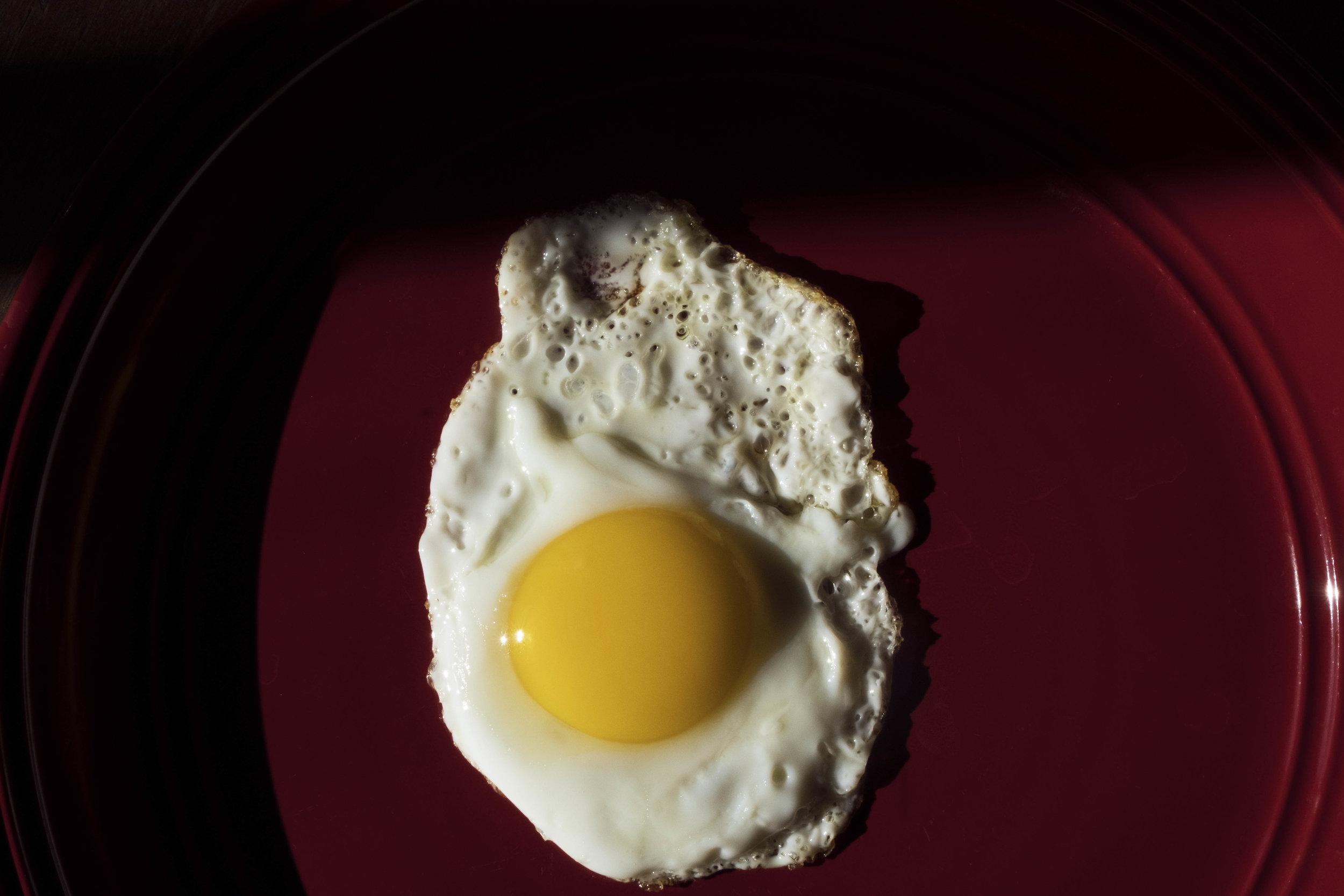 Aldochacon_egglife_01.jpg